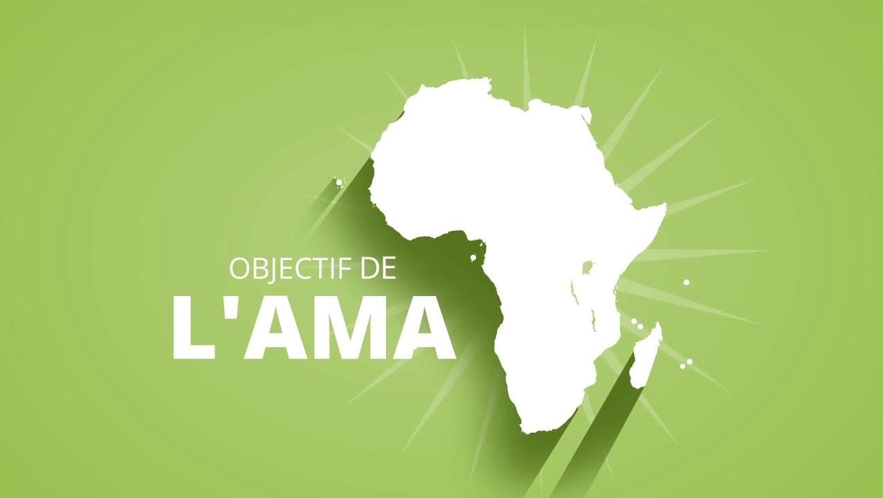 CREATION D'UNE AGENCE AFRICAINE DU MEDICAMENT : Une priorité pour le continent
